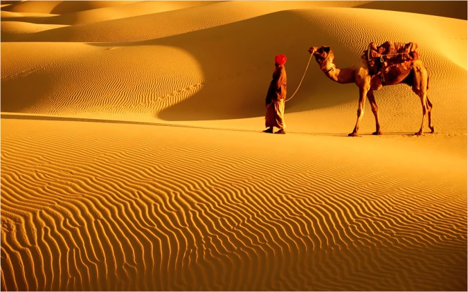 The Great Thar Desert